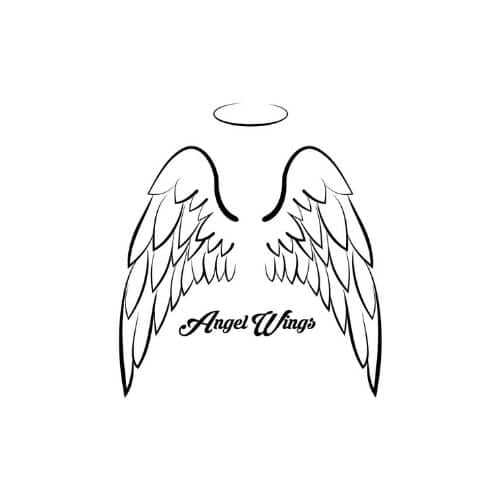 angel wings clothing